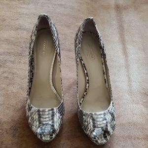 Coach Shoes - Coach peep toe python heels 8.5